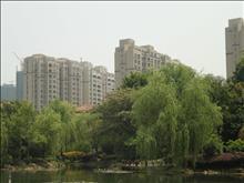新湖明珠城实景图(41)