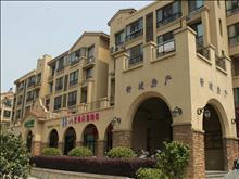 新湖明珠城实景图(32)