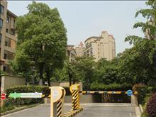新湖明珠城实景图(30)