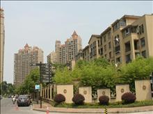 新湖明珠城实景图(25)