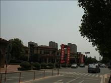 新湖明珠城实景图(19)