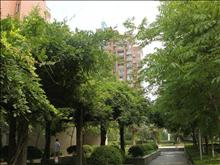 海悦花园实景图(18)