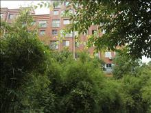 海悦花园实景图(14)