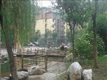 美岸青城幸福里实景图(2)