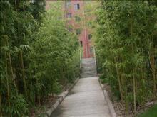海悦花园实景图(4)