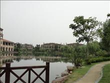 新湖明珠城实景图(8)