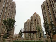 新湖明珠城实景图(3)