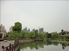 新湖明珠城实景图(1)