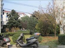 鲈乡二村实景图(7)