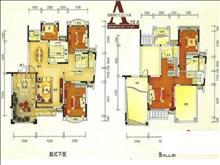 梅石小区户型图(3)